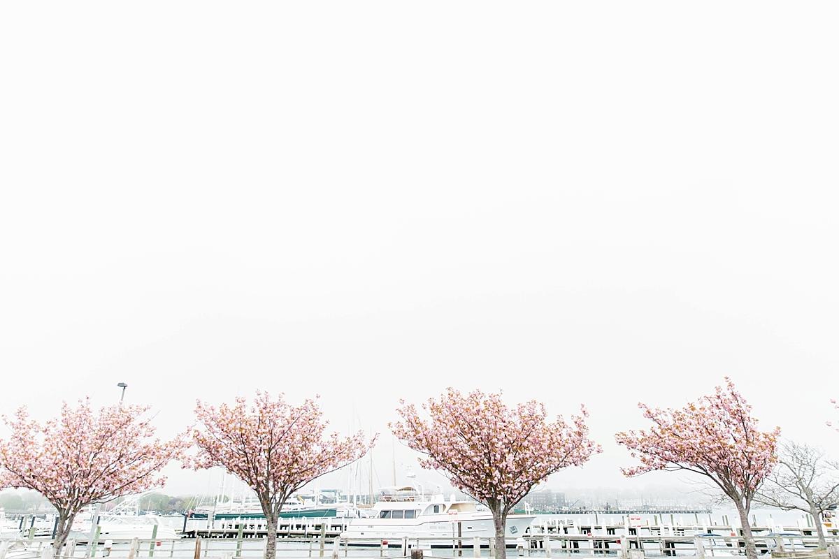 belle mer spring
