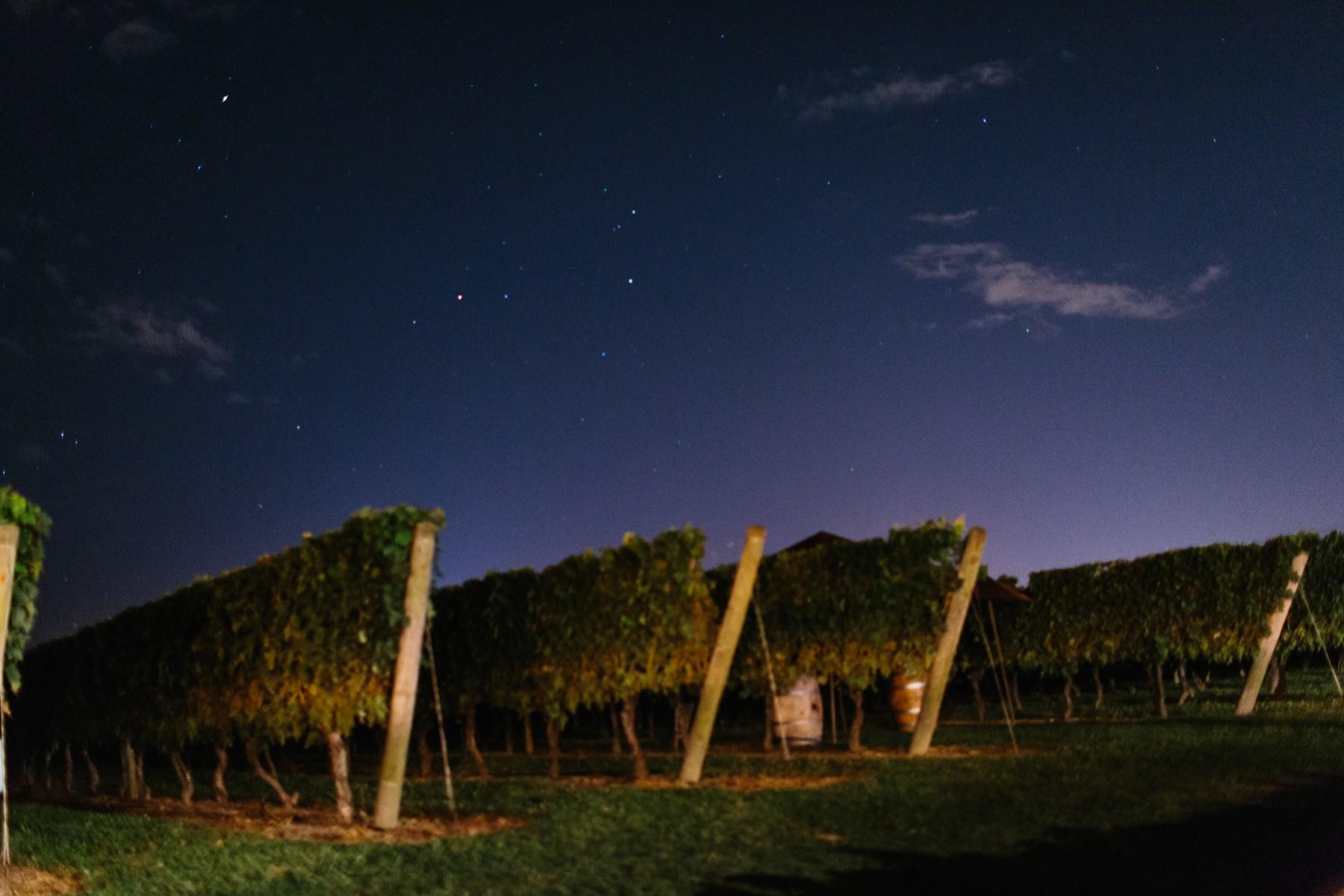 night shot newport vineyards