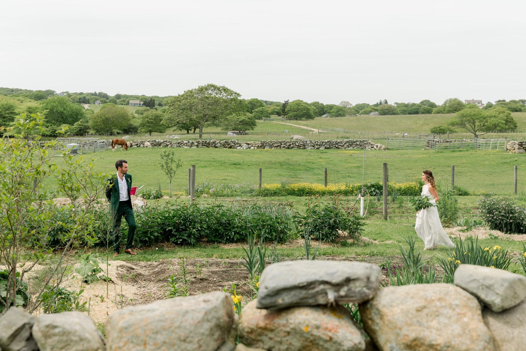 first look allen farm marthas vineyard