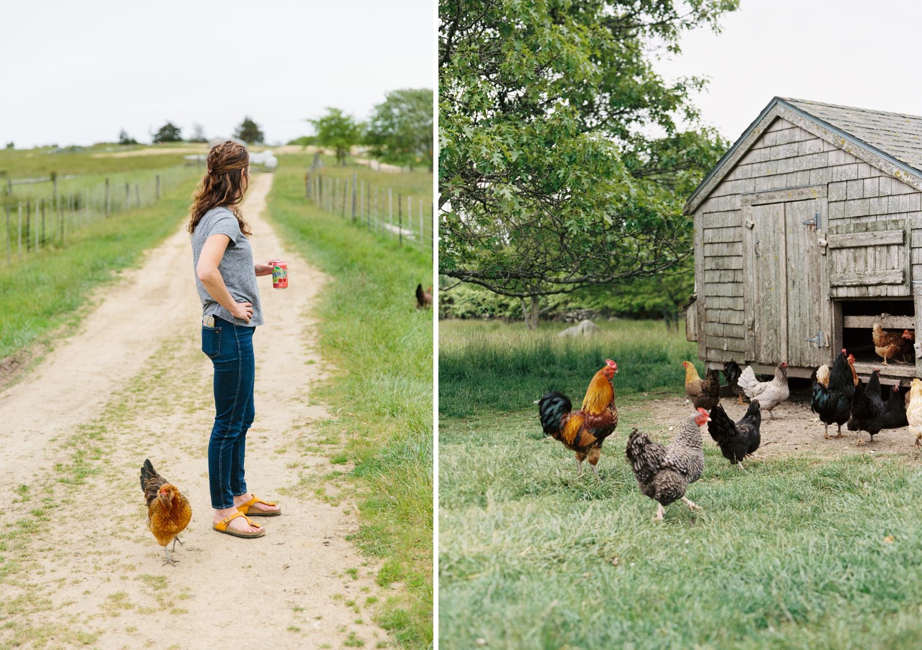 stay at allen farm