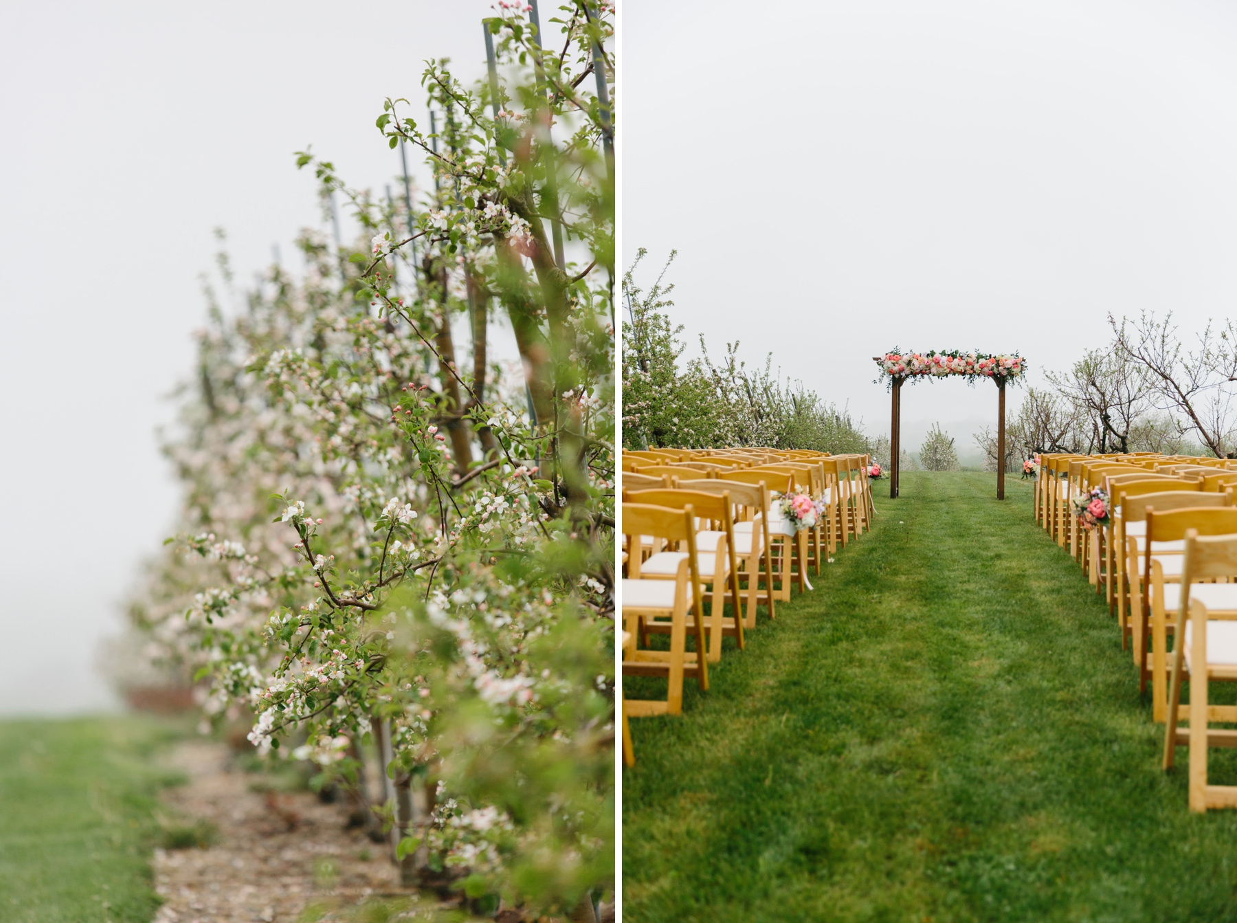 sweet berry farm orchard ceremony