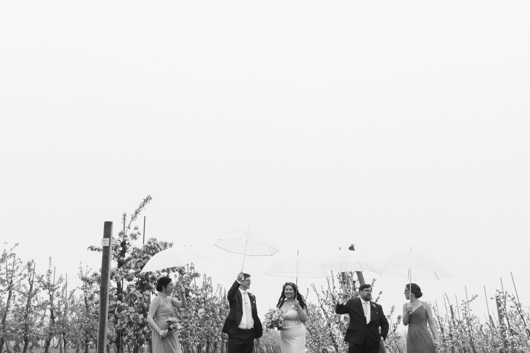 bridal party in orchard in rain
